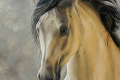 Golden Glow 70x70 cm Oil on canvas- Available